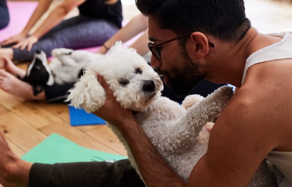 Win tickets for Doga